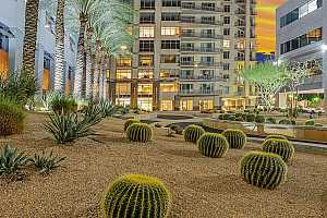 MLS # 6072959 : 2211 E CAMELBACK ROAD #705