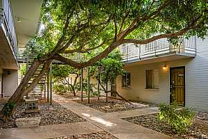 More Details about MLS # 6064605 : 1107 W OSBORN ROAD #109