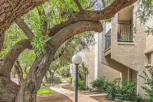 More Details about MLS # 6283672 : 8225 N CENTRAL AVENUE #9