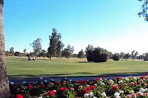 Browse active condo listings in BILTMORE CAMELBACK